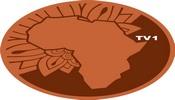 Africa TV 1