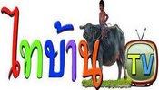 Thai Baan TV 83