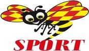 SportExpressen TV